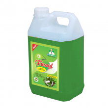 Finayl – Neem Fresh- Advanced phynel with excellent cleaning   Floor Cleaner