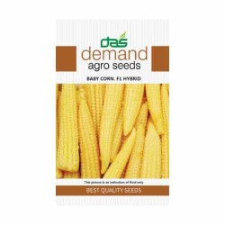 DAS agro seeds ( Baby Corn F1 Hybrid ) 25 Seeds