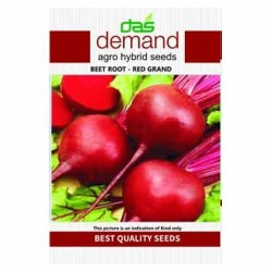 DAS agro seeds ( Beet root F1 - red grand )