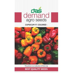 DAS agro seeds ( Capsicum F1 colored ) 20 Seeds