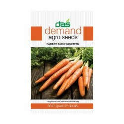 DAS agro seeds ( Carrot early nineteen ) 600 Seeds