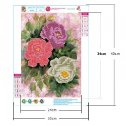 5d diamond painting living room peony flower part stick drill(Diamond+tool+canvas)