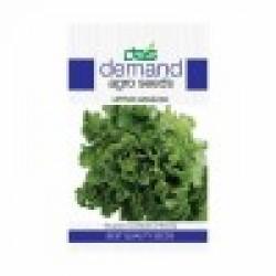 DAS agro seeds ( Lettuce Angelina ) 300 Seeds
