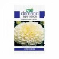 DAS agro seeds ( Marigold vanila white ) 60 seeds