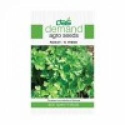 DAS agro seeds ( Parsley -F1 hybrid ) 300 Seeds