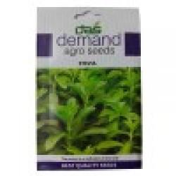 DAS agro seeds ( Stevia ) 25 Seeds